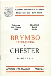 Brymbo Steelworks 0 Chester 8